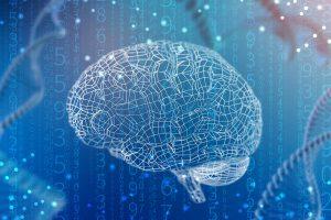 neuromarketing-grundlagen